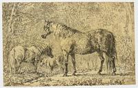 [Horses in a Wood.]