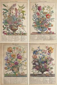 [Twelve Months of Flowers] The Flower-Garden Display'd, In Above Four Hundred Curious Representations Of the most Beautiful Flowers;