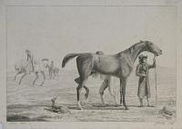 [Study: Race Horse and Groom.]