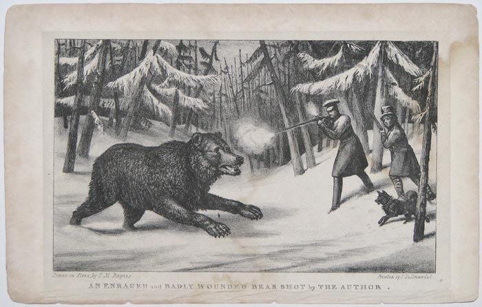 An Enraged and Badly Wounded Bear Shot by The Author.