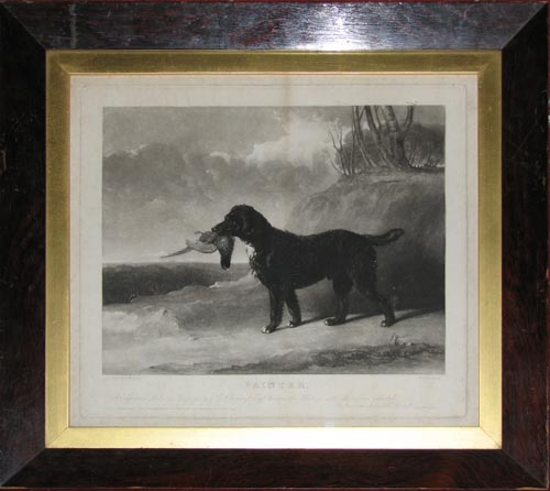 Painter, A Celebrated Retriever the property of E.Chinery Esqr. to whom this Plate is with Permission dedicated By his obedient humble Servant Willm. Giller.