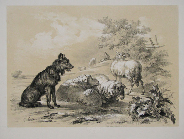 [Sheepdog and sheep in a landscape; shepherd in background. Numbered 'No.5' lower left.]