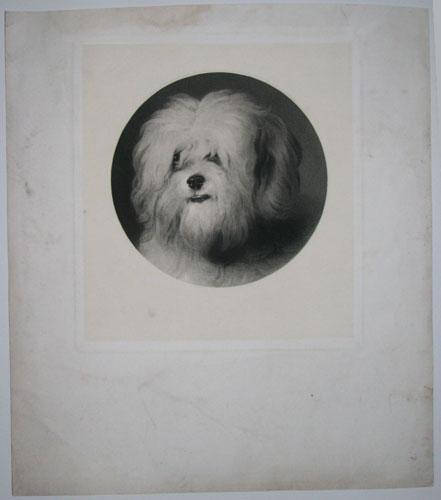 Grosvenor Prints