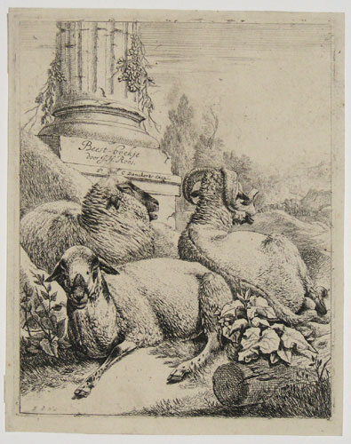 [Ram and Two Sheep.]