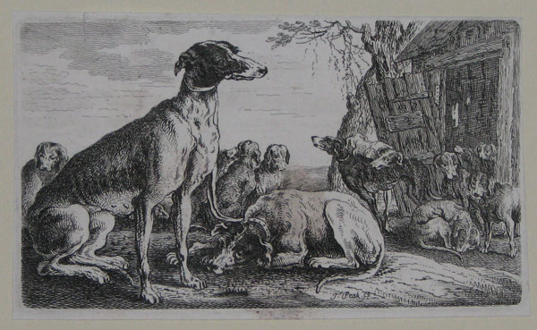 [Dogs in front of Doghouse.]