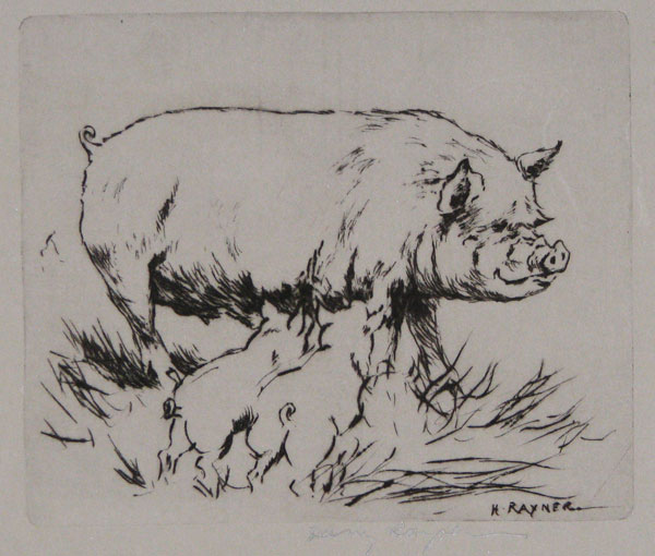 [A sow suckling piglets.]