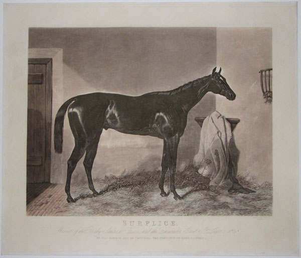Surplice. Winner of the Derby Stakes at Epsome, and the Doncaster Great St. Leger, 1848.