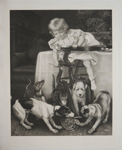 [Infant in highchair at table with dogs and a cat.]