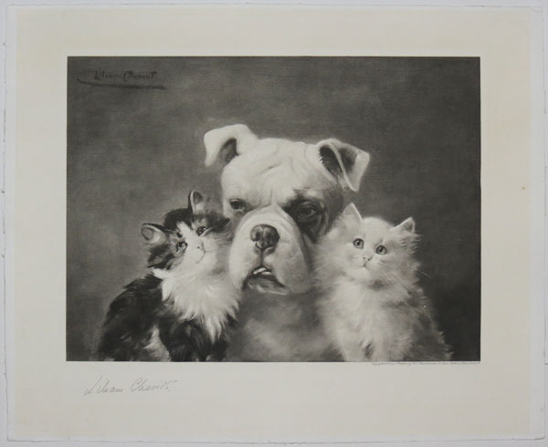 [Bulldog between Two Cats.]