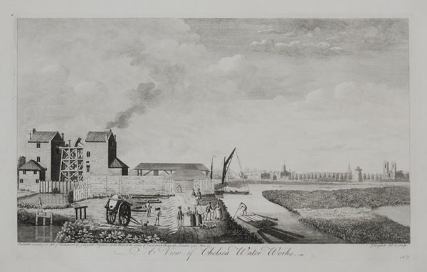 A View of Chelsea Water Works.