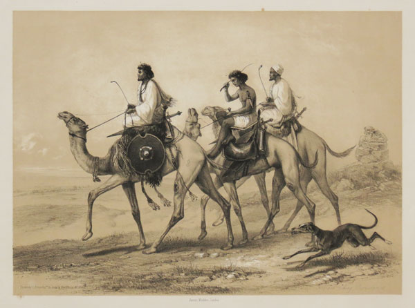 Ababdeh riding Dromedaries.