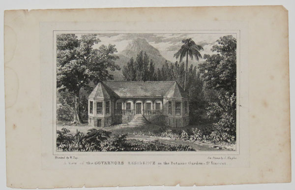 A View of the Governors Residence in the Botanic Garden _ St. Vincent.