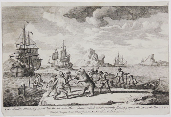 The sailors attacking the White Bear with their Spears,