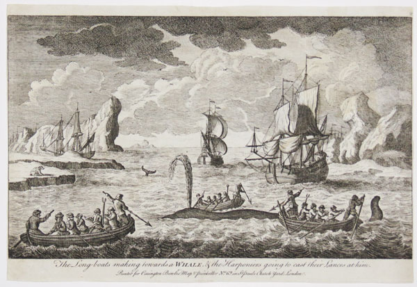The Long-boats making towards a Whale, & the Harponiers going to cast their Lances at him.  2