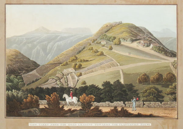 [St Helena.] View taken from the Road leading Towards the Plantation House.