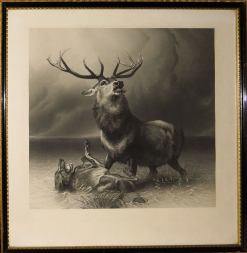[The Stag at Bay.]