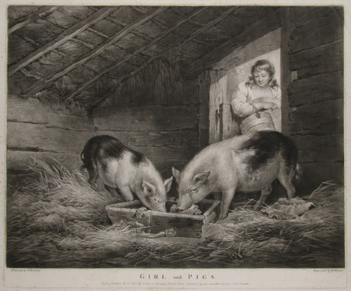Girl and Pigs.