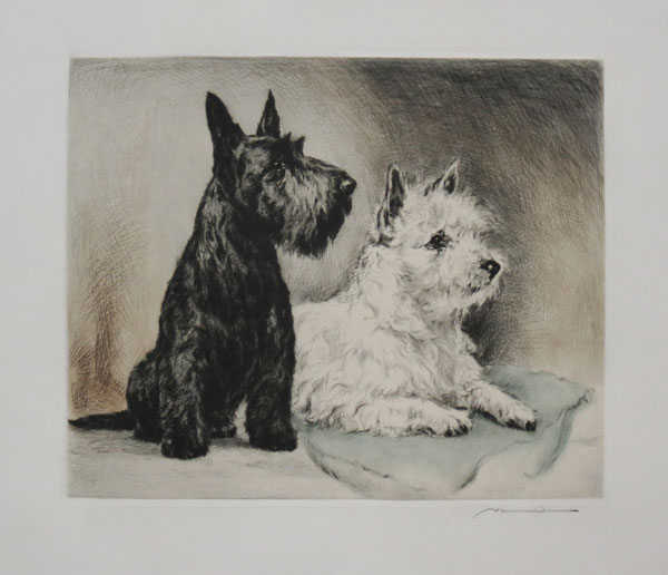 [Scottie & West Highland Terrier.]