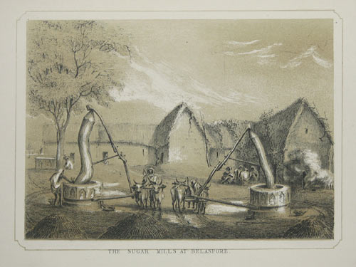 The Sugar Mills at Belaspore.