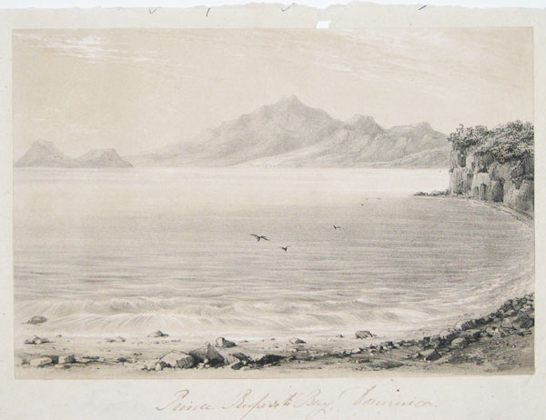 [Nine lithographs from the rare book 'Views in the Island of Dominica'.]