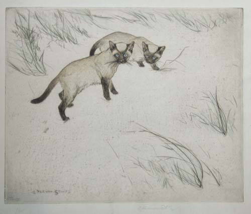 [Two Siamese Cats.]