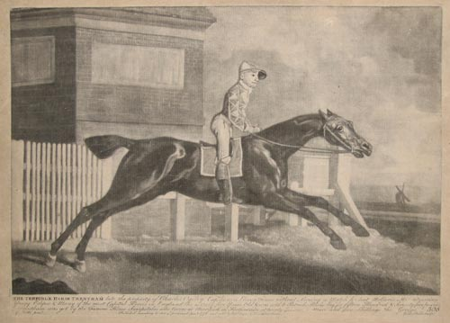 The Terrible Horse Trentham late the property of Charles Ogilvy Esq.r...