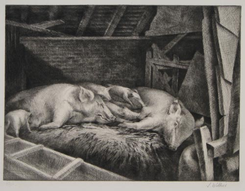 Pigs [in pencil lower left].