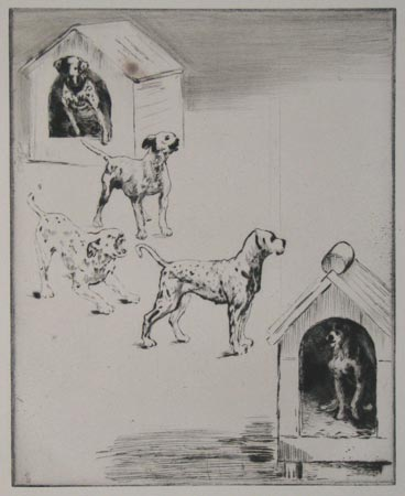 [Dalmation Dogs and kennels.]