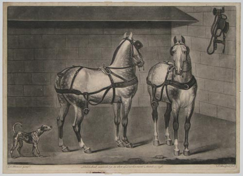 [Two coach horses.]