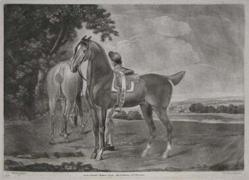 [Two horses and a boy.]
