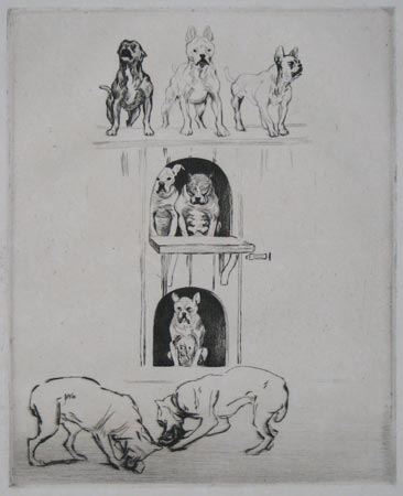 [Studies of Staffordshire Bull Terriers.]